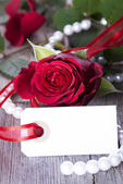 White Label with Red Rose — Стоковое фото