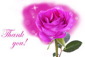 Pink Rose with Thank You — Stock Photo