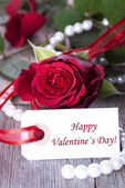 Label with Happy Valentines Day — Stockfoto