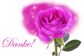Pink Rose with Danke — Stock Photo