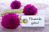 Label with Thank You — Stock Photo