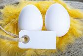 Two Eggs — Stock Photo