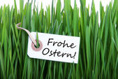 Frohe Ostern with Grass — Stockfoto