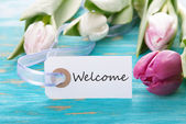Tag with Welcome — Stock Photo