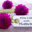 Stock Photo: Label with Alles Liebe zum Muttertag