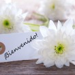 Label with Bienvenido — Stock Photo #41747773