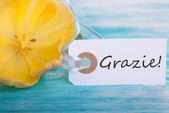 Banner with Grazie — Fotografia Stock