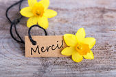 Merci — Stock Photo