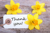 Tag with Thank You — Stock Photo
