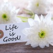 Label with Life is Good — Stock Photo #43407357