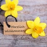 Herzlich Willkommen Label — Stock Photo #43407553