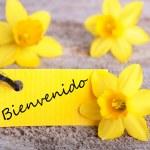Bienvenido Tag — Stock Photo #43407559