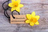 Herzlich willkommen etiqueta — Foto de Stock