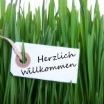 Label with Herzlich Willkommen — Stock Photo #43928551