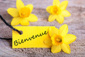 Tag With Bienvenue — Stock Photo