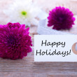 Label with Happy Holidays — Stock Photo #43931445