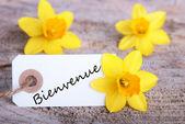 Znak Bienvenue — Zdjęcie stockowe