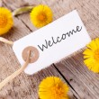 White Banner with Welcome — Stock Photo #45079177
