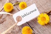 White Banner with Welcome — Stock Photo