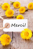 Yellow Flowers with Merci — Stock Photo