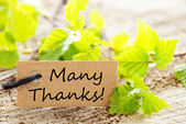 Label with Many Thanks — Stock Photo