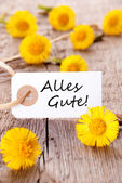 Alles Gute with Yellow Flowers — Stock Photo
