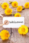 Yellow Flowers with Welcome — Stock Photo