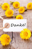 Yellow Flowers with Danke — Stock Photo