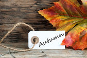 Autumn on a Label — Stock Photo