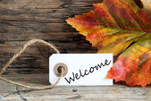 Autumnal Background with Welcome — Stock Photo