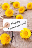 Label with Happy Thanksgiving — Stock Photo