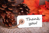 Thank You Fall Label — Stockfoto