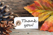 Fall Background with Thank You — Stock Photo