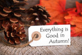 Label with Everything is Good in Autumn — Stock Photo
