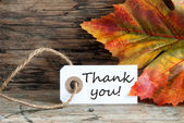Autumnal Thank You Label — Stock Photo