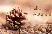 Autumn Background with Hello Autumn — Stock Photo