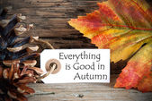 Tag with Everything is Good in Autumn — Stock Photo