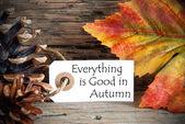 Tag com tudo o que é bom no outono — Fotografia Stock