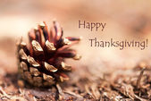 Fir Cone with Happy Thanksgiving — Stock Photo