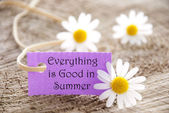 Label with Everything is Good in Summer — Zdjęcie stockowe