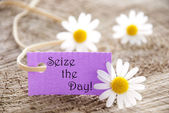 Label with Seize the Day — Stock Photo