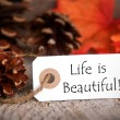 Fall Tag with Life is Beautiful — Stock Photo #49545145