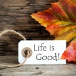 Autumn Label with Life is Good — Stock Photo #49545163