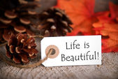 Fall Tag with Life is Beautiful — Stock Photo