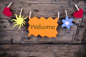 Orange Tag with Welcome — Stock Photo