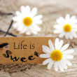 Life is Sweet on a Natural Label — Stock Photo #50284463
