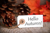 Tag with Hello Autumn — Stock Photo