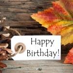 Tag with Happy Birthday — Stock Photo #50636761