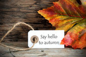 Tag with Say Hello to Autumn — Stock Photo
