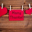 Many Thanks on a Red Tag — Stock Photo #51126819